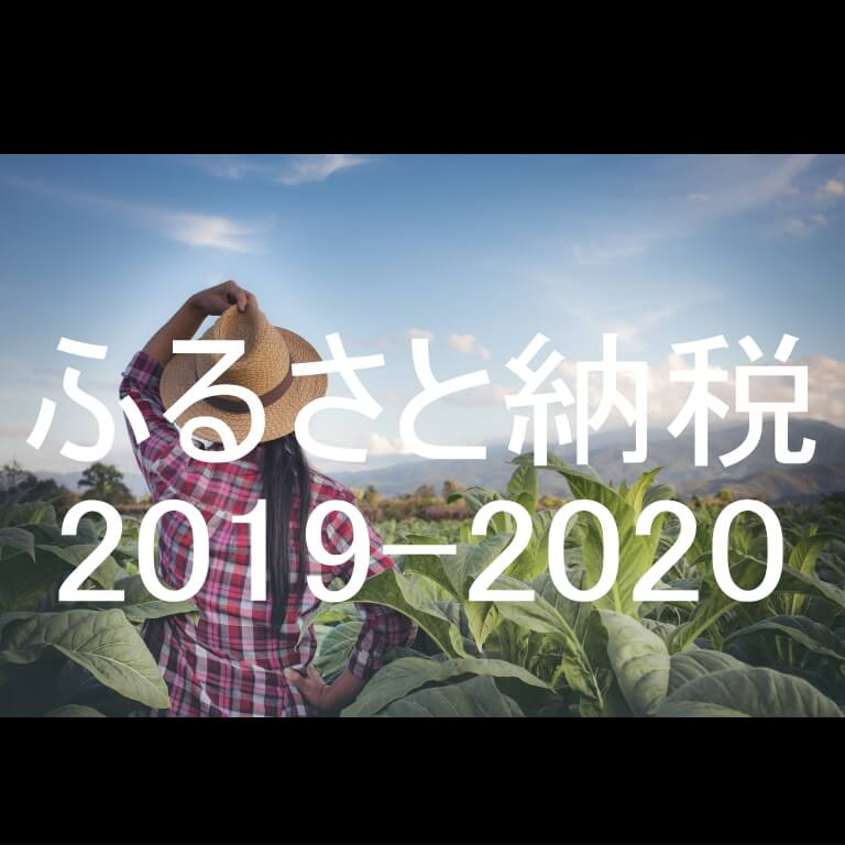 ふるさと納税2019-2020